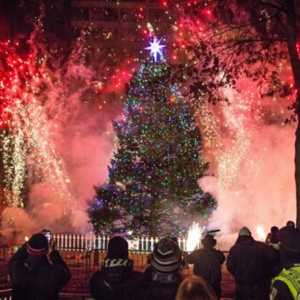 boston tree lighting